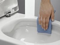 как очистить унитаз от мочевого камня