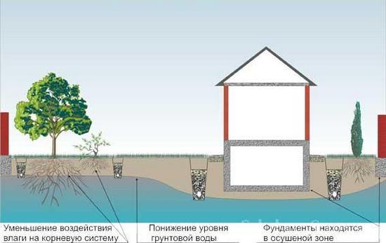 дренаж участка от грунтовых вод