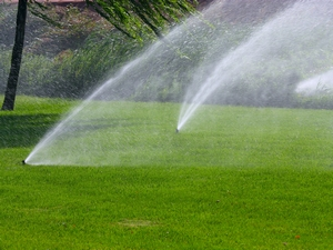 автоматический полив огорода своими руками